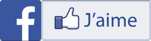 Page facebook DS Maçonnerie